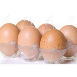 Huevos Fregenal Talla L 1/2...