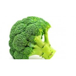 Broccoli Natural 500g